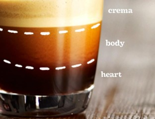 Perfect-Espresso-Shot